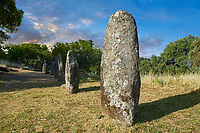 Pictures & images of prehistoric Copper age proto anthropomorphic standing stone statue Menhirs in the  Biru 'e Concas archaeolological site, Sorgono, Sardinia