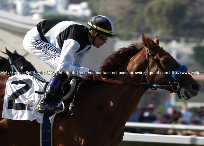 Capo Bastone winning a 2 year old maiden race at Del Mar Race Course in Del Mar, California on August 4, 2012.