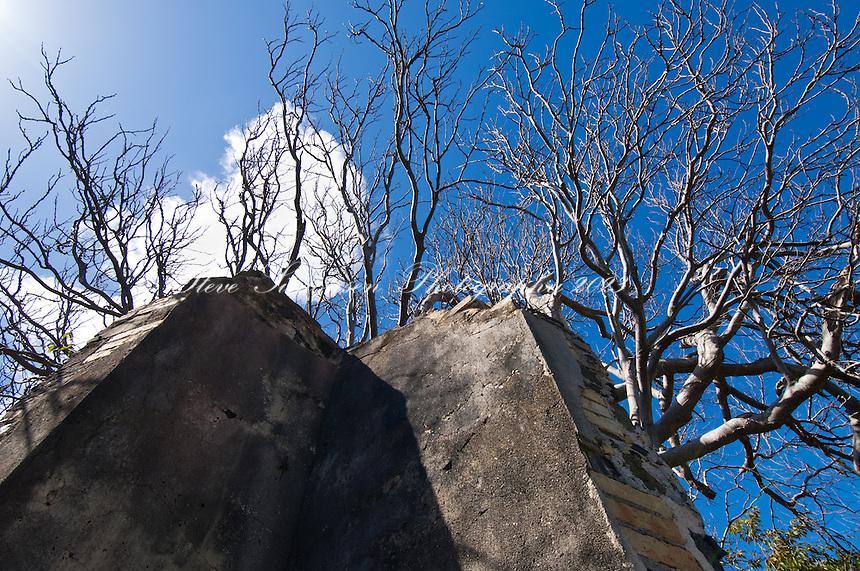Annaberg School Ruins<br /> Virgin Islands National Park<br /> St. John<br /> U.S. Virgin Islands