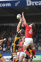 Wycombe, GREAT BRITAIN, left Simon SHAW and Mark JONES, jump for the high ball, during the Heineken Cup game Wasps vs Llanelli Scarlets, at Adams Park Stadium, Bucks, 13.01.2008 [Photo, Peter Spurrier/Intersport-images]