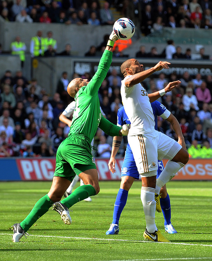 Everton's Tim Howard punches the ball clear from Swansea City's Ashley Williams ..Football - Barclays Premiership - Swansea City v Everton - Saturday 22nd September 2012 - Liberty Stadium - Swansea..