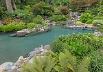 Vashon-Maury Island, WA: Salt water plunge pool surrounded by woodland perennial garden.