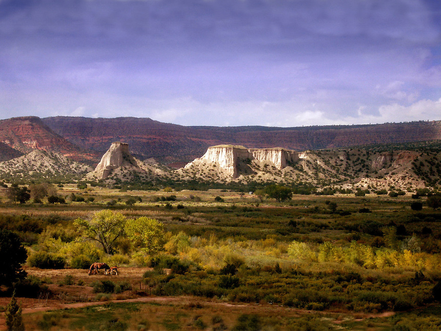 NewMexicoView