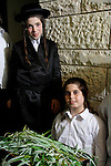 Israel, Bnei Brak. Succot holiday at the Premishlan congregation. Boys with Haddas, one of the Four Species<br />