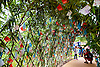 Leafy arch covered in decorations written by children to support team GB at London 2012 Olympics