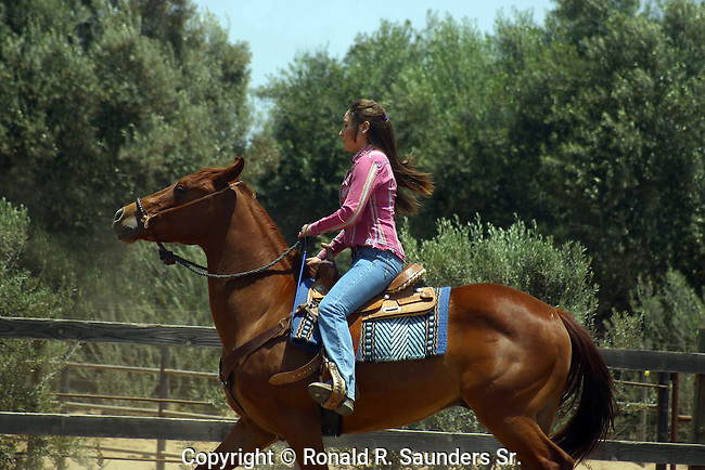 YOUNG WOMAN DISPLAYS HER HORSEMANSHIP SKILLS