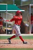 GCL Nationals shortstop Luis Garcia (7) at bat during the first game of a doubleheader against the GCL Marlins on July 23, 2017 at Roger Dean Stadium Complex in Jupiter, Florida.  GCL Nationals defeated the GCL Marlins 4-0.  (Mike Janes/Four Seam Images)