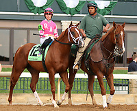 "October 07, 2018 : #12 All About It and jockey Tyler Gaffalione in the 1st running of The Indian Summer $200,000 ""Win and You're In Breeders' CupJuvenile Turf Sprint Division"" for trainer Mark Casse and owner John Oxley  at Keeneland Race Course on October 07, 2018 in Lexington, KY.  Candice Chavez/ESW/CSM"