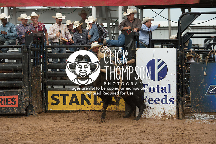 Ramon Richard attempts 33 Livin' Large of Martinez Bucking Bulls during the American Bucking Bull, Incorporated event in Decatur, TX - 6.3.2016. Photo by Christopher Thompson