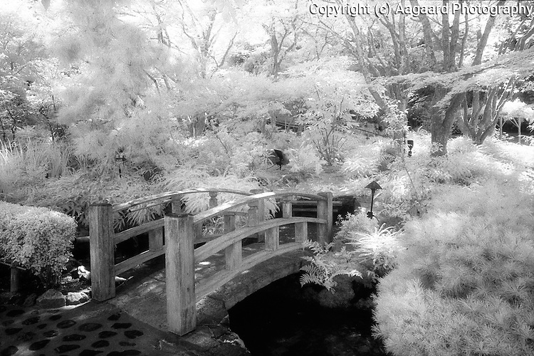 Butchart Garden Japanese bridge in infrared.<br /> <br /> Nikon F3HP, 24mm lens, Kodak High Speed infrared film, red filter