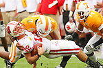 January 1, 2008:  Wisconsin quarterback Tyler Donovan, goes down with an injury early in the game but returned to finish with 155 yards passing.  The Tennessee Volunteers defeated the Wisconsin Badgers 21-17 in the 2008 Outback Bowl in Tampa, Florida, January 1, 2008.