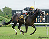 Testudo winning at Delaware Park on 9/24/14