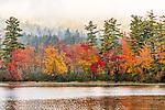 Fall foliage in Chocorua Lake in Tamworth, New Hampshire, USA