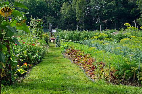 Yarmouth community Garden, Yarmouth Maine, USA
