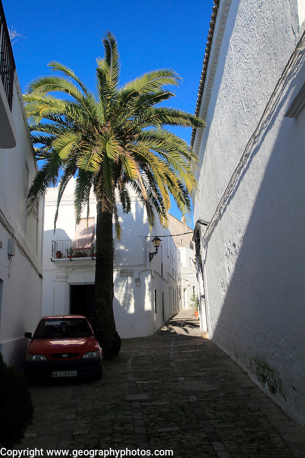 Traditional whitewashed buildings in Vejer de la Frontera, Cadiz Province, Spain