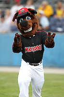 Batavia Muckdogs mascot Homer during a game vs. the Mahoning Valley Scrappers at Dwyer Stadium in Batavia, New York August 2, 2010.  Batavia defeated Mahoning Valley 6-3 in 10 innings.  Photo By Mike Janes/Four Seam Images