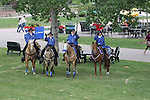 THE RIDERS IN BLUE