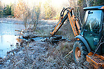 Removing nuisance beaver dam with back hoe
