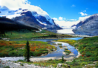 View on Columbia Icefield, Jasper National Park, Canada.