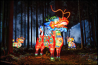 BNPS.co.uk (01202 558833)<br /> Pic: DavidMcGirr/BNPS<br /> <br /> ***Please Use Full Byline***<br /> <br /> Mythical Qilin, chimerical hooved creatures with the head of a lion, inhabit the woods.<br /> <br /> The largest Chinese 'Festival of Light' seen in Europe is taking shape at the Longleat House in Wiltshire - A small army of over 50 skillled workers have flown in from the remote village of Zigong in central China to create the stunning spectacle.<br /> <br /> Among the different scenes are a 20-metre tall Chinese temple, a 70-metre-long dragon, created using more than 10,000 porcelain cups, bowls, plates and dishes, and the mythical qilin &ndash; a chimerical hooved creature with the head of a lion &ndash; featuring more than 30,000 glass phials filled with coloured liquid.<br /> <br /> Massive traditional Chinese masks are also featured and there is also a bamboo forest which is home to a family of life-size pandas, giant elephants, zebras, lions and deer as well as giant lotus flowers floating on the lake.<br /> <br /> Filled with thousands of LED lights and handmade by a team of 50 highly-skilled craftsmen from Zigong in China's Sichuan province, the lanterns recreate a magical world of myths and legends.<br /> <br /> Set amid the beautiful backdrop of the landscaped grounds and gardens surrounding Longleat House, the lit structures also spill out on to Half Mile Lake to create a stunning and enchanting experience for visitors.<br /> <br /> It&rsquo;s the first time a festival of this size has taken place in the UK and the Chinese team behind the spectacular event believe its size and complexity make it unique throughout Europe.