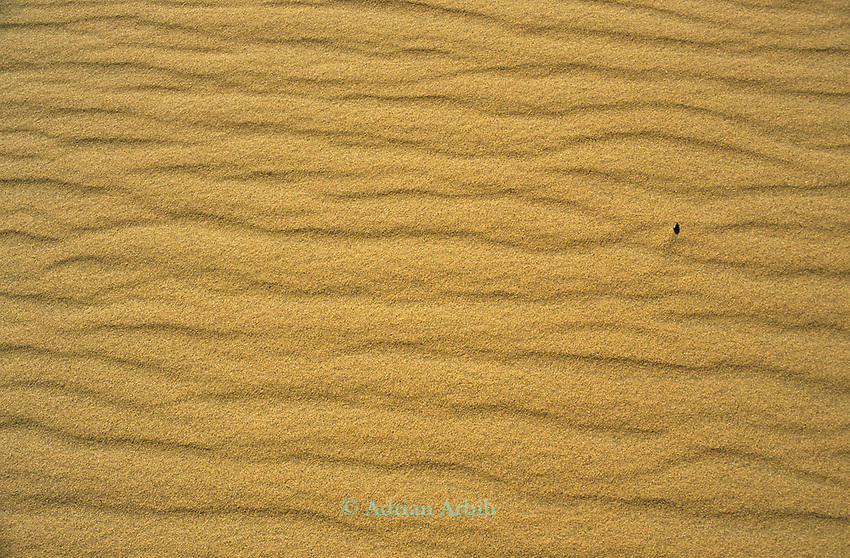 Sand patterns in the Namib Naukluft desert.  Access is restricted due to Diamond mining activity by DeBeers.