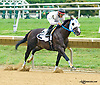 Jake N Elwood winning The New Castle Stakes at Delaware Park on 9/12/15