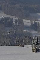 Deutschland, Bayern, Chiemgau, Ruhpolding: Austragungsort fuer den jaehrlichen Biathlon-Weltcup; mit der Pferdekutsche durch die Winterlandschaft im Bayerischen Alpenvorland umrahmt von den Chiemgauer Alpen | Germany, Bavaria, Chiemgau, Ruhpolding: venue of the yearly Biathlon World Cup, winter scenery at Bavarian Alpine Upland