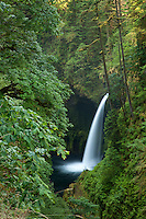 Metlako Fallls is located on Eagle Creek  near the Columbia River Gorge of Oregon
