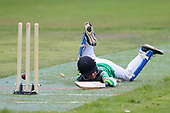 Saturday Morning Cricket