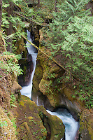 Ladder Creek Falls, North Cascades National Park, Washington, US