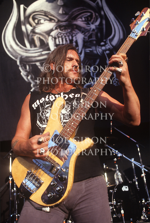 Various portraits & live photographs of the rock band, Motorhead