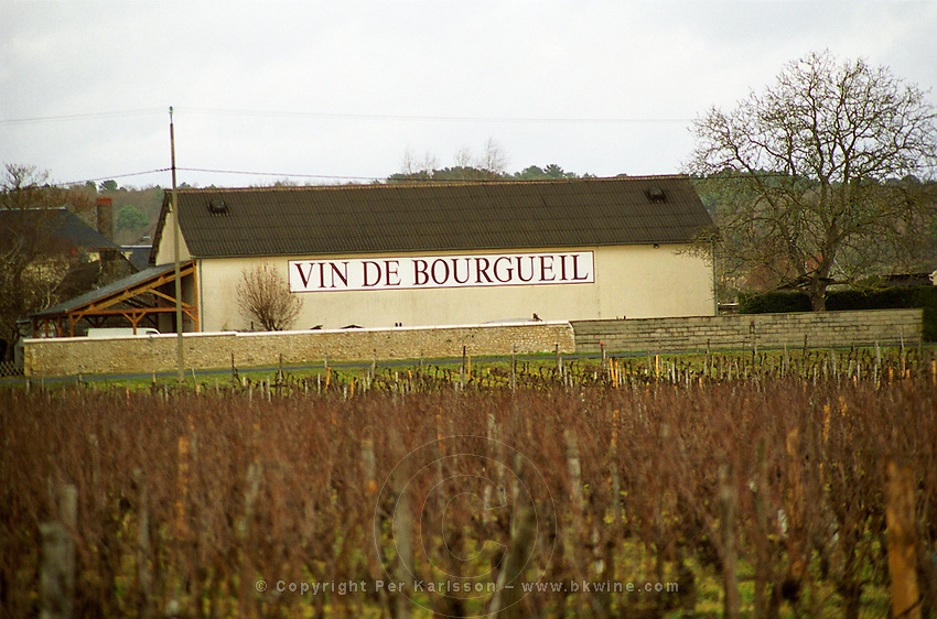 A winery building in the distance with Vin de Bourgueil Wine from Bourgueil written in huge letters and in the foreground a vineyard with cabernet franc in winter, Bourgueil Indre et Loire France