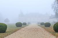 France, Loir-et-Cher (41), Cellettes, Château de Beauregard et parc, la  façade nord-est, allée de Chambord et buis centenaires