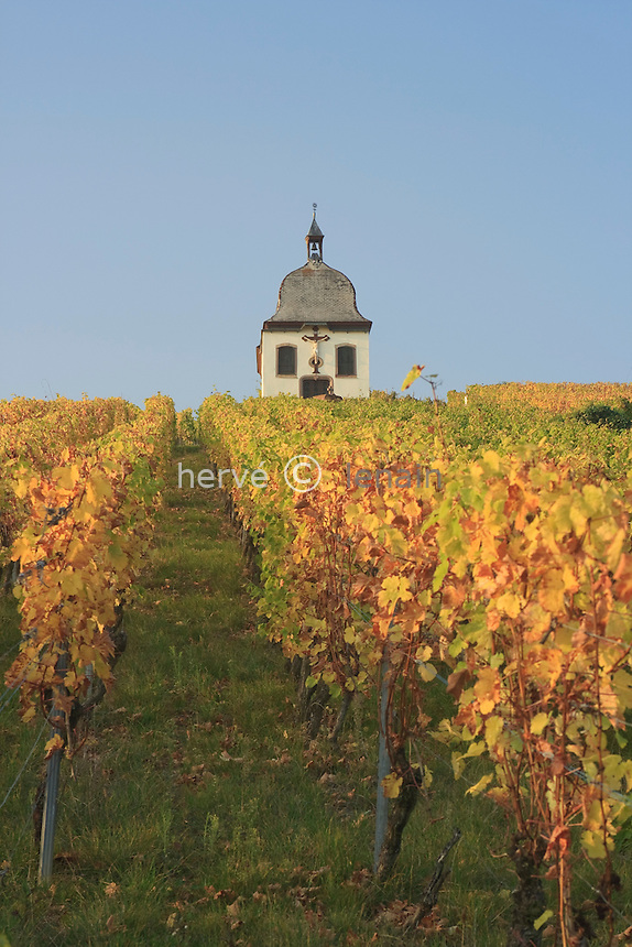 France, Alsace, Bas-Rhin, 67, Marlenheim, chapelle Marlenberg dans les vignes en automne // France, Alsace, Bas-Rhin, Marlenheim, chapel Marlenberg in the vineyards in autumn