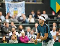 12-02-13, Tennis, Rotterdam, ABNAMROWTT, Juan Martin Del Potro