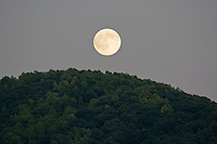 Moon rising over Mountain top.