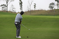 Francesco Molinari (ITA) chips onto the 5th green during Saturay's Round 3 of the 2014 BMW Masters held at Lake Malaren, Shanghai, China. 1st November 2014.<br /> Picture: Eoin Clarke www.golffile.ie
