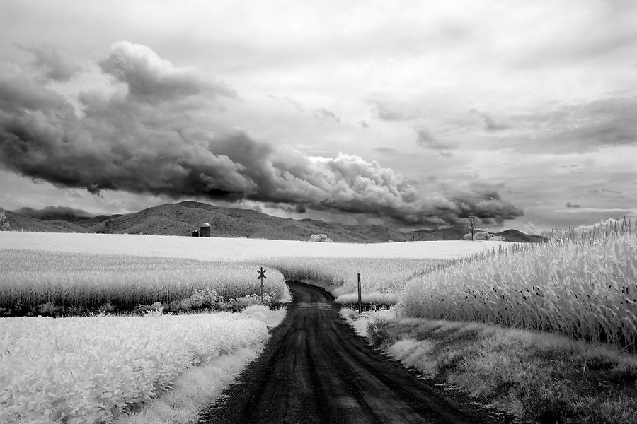 An infrared image taken of a solitary road leading to a distant farm in Nelson , VA. Photo/Andrew Shurtleff