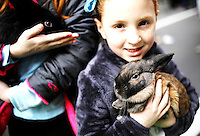 A girl holds up a rabbit as people take part during the annual easter parade in Manhattan, New York, 03.27.2016. This annual tradition has been taking place in New York City for over 100 years, Photo by VIEWpress.