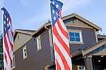 Patriotic Brown House