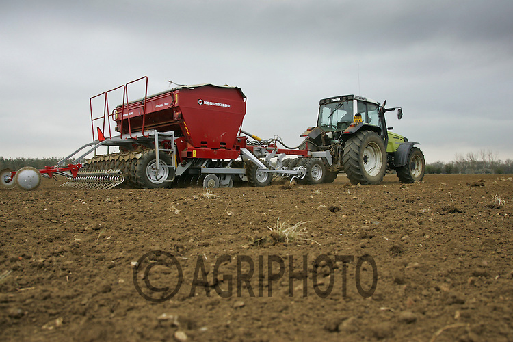 Drilling Wheat