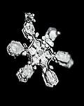 15 Snowflakes
