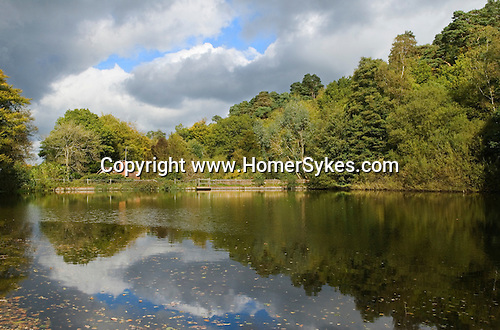 Friday Street. Leith Hill Surrey UK . The Hammer Pond.