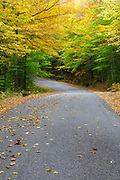 Willey House Station House Road in Harts Location, New Hampshire during the autumn months. This area is within Crawford Notch State Park.