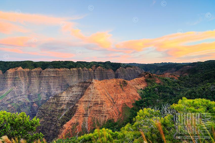 Dawn light paints the sky in pastel hues atop the Kohua Ridge Trail, Waimea Canyon, Kaua'i.