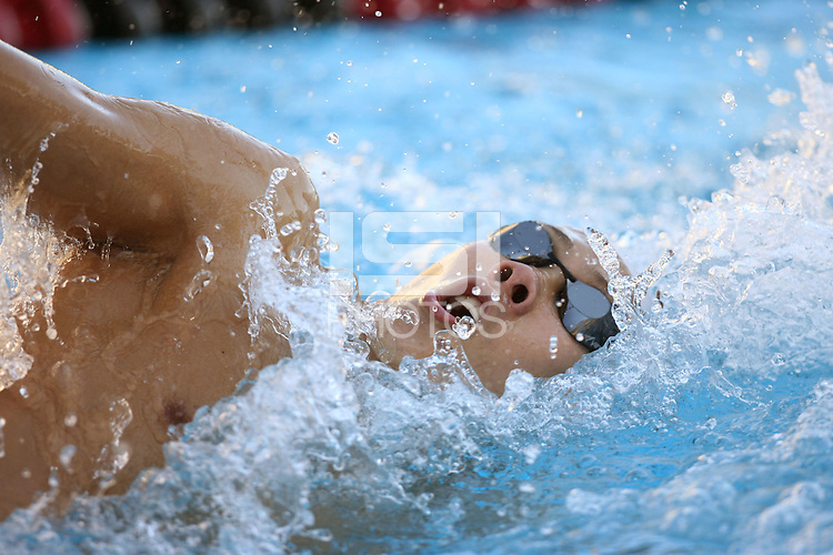 STANFORD, CA - JANUARY 10:  Geoff Cheah of the Stanford Cardinal during Stanford's 124-69 win over the University of the Pacific on January 10, 2009 at the Avery Aquatic Center in Stanford, California.