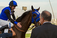 ARCADIA, CA  DECEMBER  30: #2 Midnight Crossing, gets a well deserved pat by Brice Blanc, after winning the Robert J. Frankel Stakes (Grade lll) on December 30, 2017, at Santa Anita Park, in Arcadia, CA.(Photo by Casey Phillips/ Eclipse Sportswire/ Getty Images)
