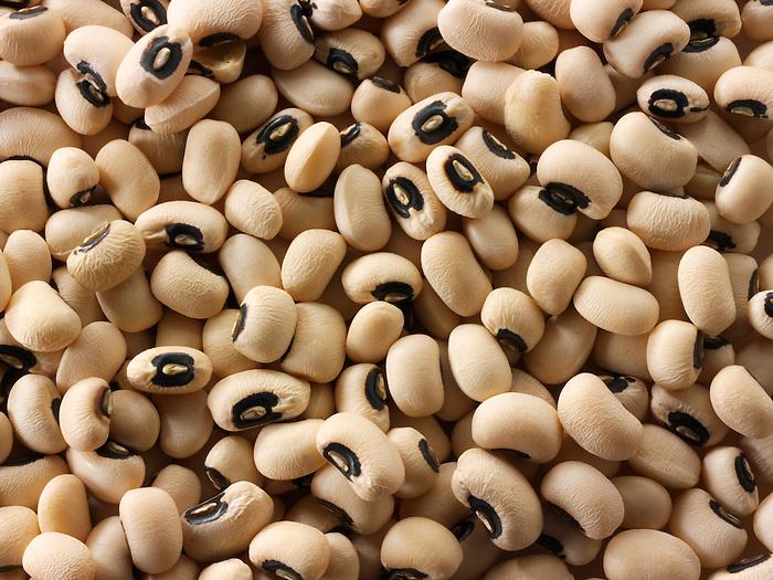 Organic Black Eyed Beans - Stock Photos