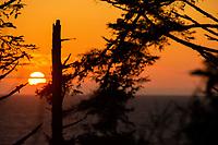 Sunset from Kalaloch Perch, Olympic Peninsula, Washington, US