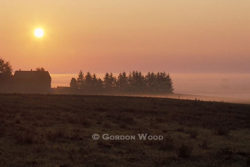 Southwestern Ontario Farm at Sunrise Surrounded by Fog